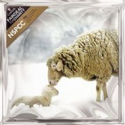 NSPCC Pack of 8 Sheep Charity Christmas Cards